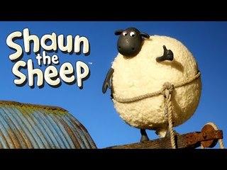 The Skateboard - Shaun the Sheep
