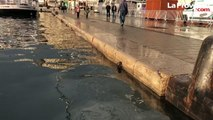 Marseille : après les fortes pluies, le Vieux-Port est sur le point de déborder
