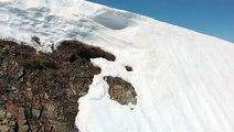 Un ourson glisse sur la neige sur cet flan de montagne et n'arrive pas à rejoindre sa maman