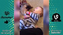 TRY NOT TO LAUGH - Funny Babies Compilation 2018   Funny Kids Fails Videos 2018, 2019 show comedy action