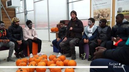 Atelier Citrouilles à la ferme urbaine de Saint-Denis