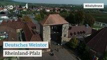 #DailyDrone: Deutsches Weintor | DW Deutsch