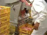 Controle Hallal de la viande de volaille