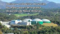 Ecologistas denuncian al Principado de Asturias los malos olores que sufren los vecinos de Navia