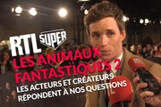 """""""Les Animaux Fantastiques 2"""" : Ezra Miller, Jude Law... Le cast nous répond"""