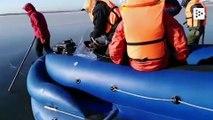 Rescatan a un perro atrapado en un lago helado en Rusia