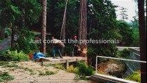 Tree Removal Services In Edinburgh- Broadleaf Wood Fuel Ltd