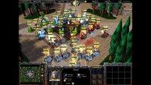 Warcraft 3: Ujimasa Presents the Elf Wars - Priest