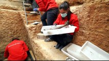 Archaeologists dig mass graves of Spanish Civil War era