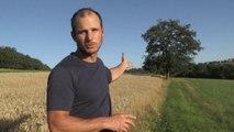 Un paysage agricole durable et partagé : la ferme de Vernand