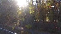 Sonbahar Yaprakları Üç Gün Sonra Süpürüldü...sonbahar Manzaraları Havadan Böyle Görüntülendi