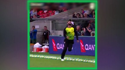 What a catch from Glenn Maxwell