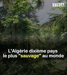 """L'Algérie dixième pays le plus """"sauvage"""" au monde"""