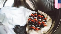 Polusi plastik: bola laundry kurangi polusi plastik - TomoNews