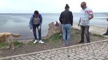 Çanakkale Bozcaada'da İzmarit Toplama Etkinliği Düzenlendi