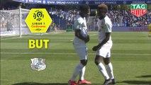 But Steven MENDOZA (66ème) / Montpellier Hérault SC - Amiens SC - (1-1) - (MHSC-ASC) / 2018-19