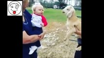 Kid Imitating Lamb