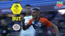 But Andy DELORT (49ème) / Montpellier Hérault SC - Stade Rennais FC - (2-2) - (MHSC-SRFC) / 2018-19