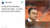 Château de Versailles, vignes du Liban... Le train de vie de Carlos Ghosn
