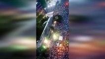 La espectacular celebración de la afición de Palmeiras tras ganar el Brasileirao