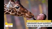 """Emisioni """"Ditë e Re"""" -  Kujdesi për kafshët në kopshtin zoologjik 15.11.18"""