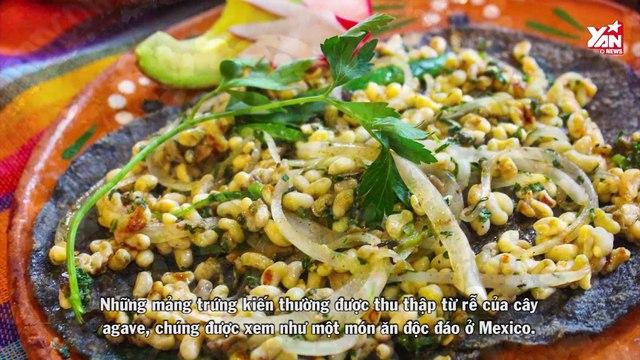 Top những món ăn kinh dị hết nấc, thách thức độ gan dạ của thực khách khắp thế giới