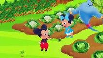 Cartoon Musique   Nous vous souhaitons un joyeux Noë   Teppy et Maddy ensemble poussent le chou gບ (2), 2019 show comedy action