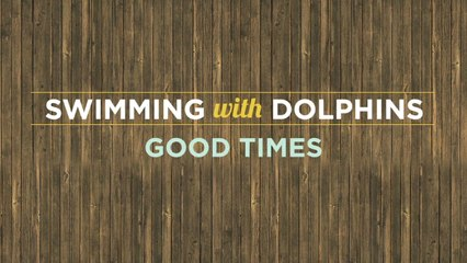 Swimming With Dolphins - Good Times