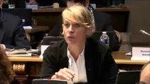 Nathalie KOENDERS. Egalité professionnelle entre les femmes et les hommes. 26 novembre 2018