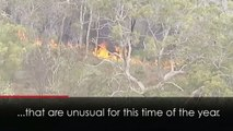 Major bushfire threatens homes during Australian heatwave