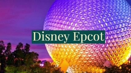 Disney Epcot!!!