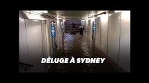 """Sydney paralysée après """"la pluie du siècle"""""""