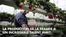 """Smaïn flingue La France a un incroyable talent et s'en prend à Gilbert Rozon : """"Je ne pouvais pas le supporter"""""""