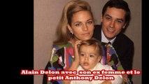 Alain Delon demande enfin pardon à ses deux fils antony et alain fabien Delon