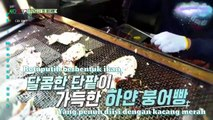 [ INDO SUB ] Travel the world on EXO's ladder CBX japan edition ep 35  full