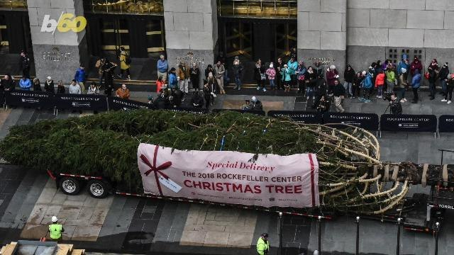 Fun Facts About The Rockefeller Center Christmas Tree You Probably Didn't Know