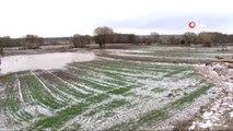 Sel Felaketinde Köylerde Binlerce Dekar Tarım Arazisi Hasar Gördü
