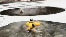 Un bombero rescata a una perra de un estanque helado
