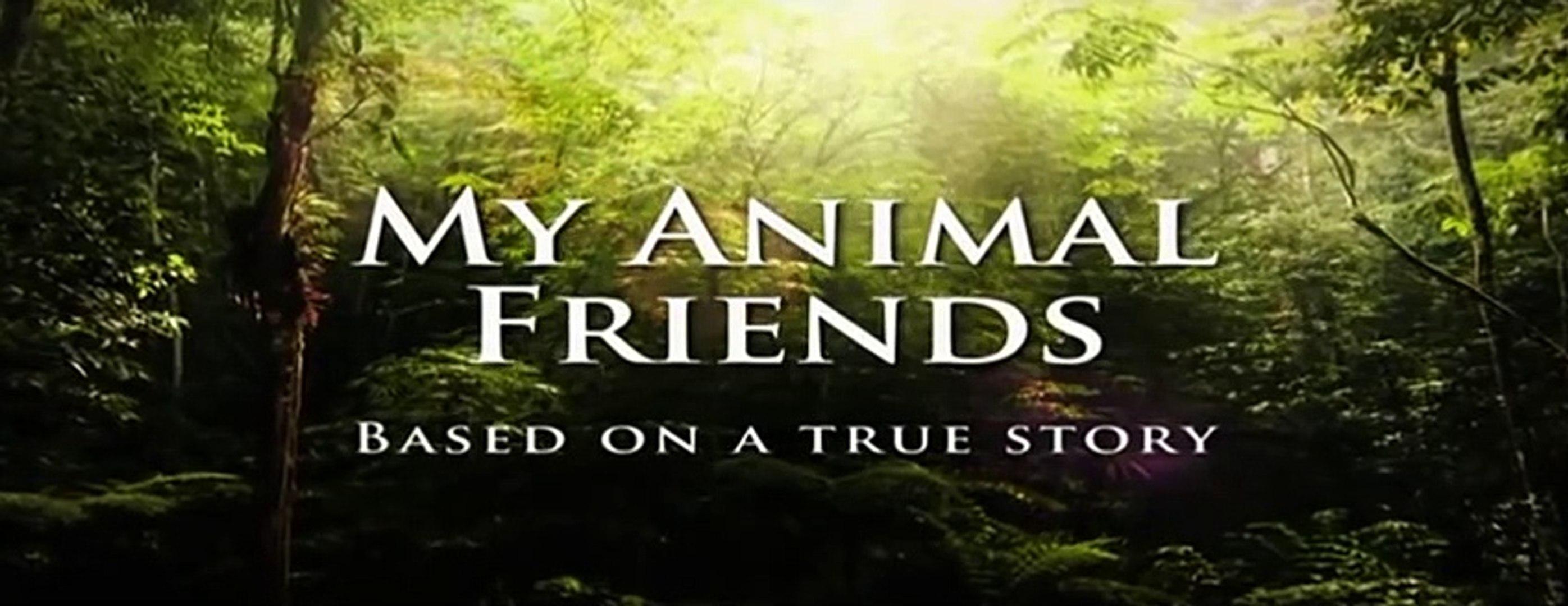 Kids Education|Animals Documentary #09
