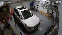 Garage Nest Cam shows moment 7.0 earthquake strikes Anchorage, Alaska