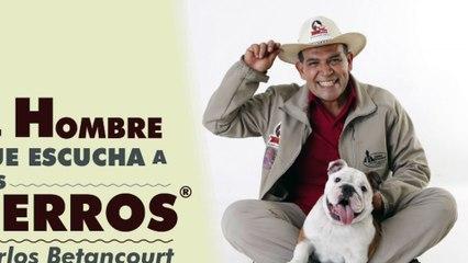 Promo dailyMotion El Hombre que Escucha a los Perros