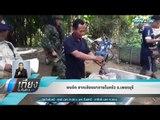 พบอีก ซากเลียงผาภายในครัว จ.เพชรบุรี - เที่ยงทันข่าว