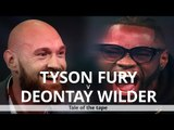Tyson Fury & Deontay Wilder - Tale Of The Tape