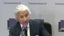 """Dominique Rousseau : """"Les « gilets jaunes »  sont tout dans le pays car c'est eux qui font le boulot. Ils ne sont rien dans les institutions. Il faut donc qu'on invente un nouveau principe de légitimité, une nouvelle institution."""""""
