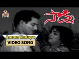 Amma Kadupu Challaga Song from Saakshi Telugu Movie | Krishna,Vijaya Nirmala