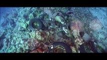 Alan Walker - Different World feat. Sofia Carson, K-391 & CORSAK (Lyric Video) - YAN News