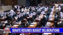 Senate resumes budget deliberations