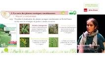 3 - Jeanne VALLET - Rencontres Naturalistes 2018