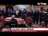 Kesedihan Sully, Anjing Penjaga George HW Bush