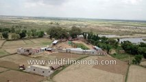 Rural Karnataka so different from IT city of Bangalore- agriculture prevails in this aerial view